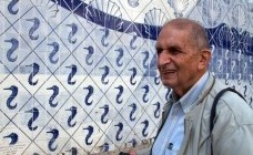 prof. Roberto Segre